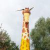 Giraffe Hüpfburg Kopf