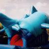 Der blaue Hai Rückseite
