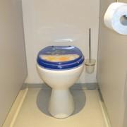 Damen WC im Toilettenwagen